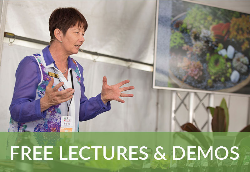 Free lectures and demos at QGE