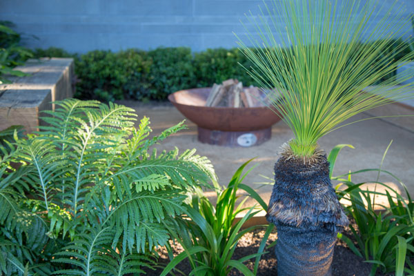 landscape garden display with fire pit