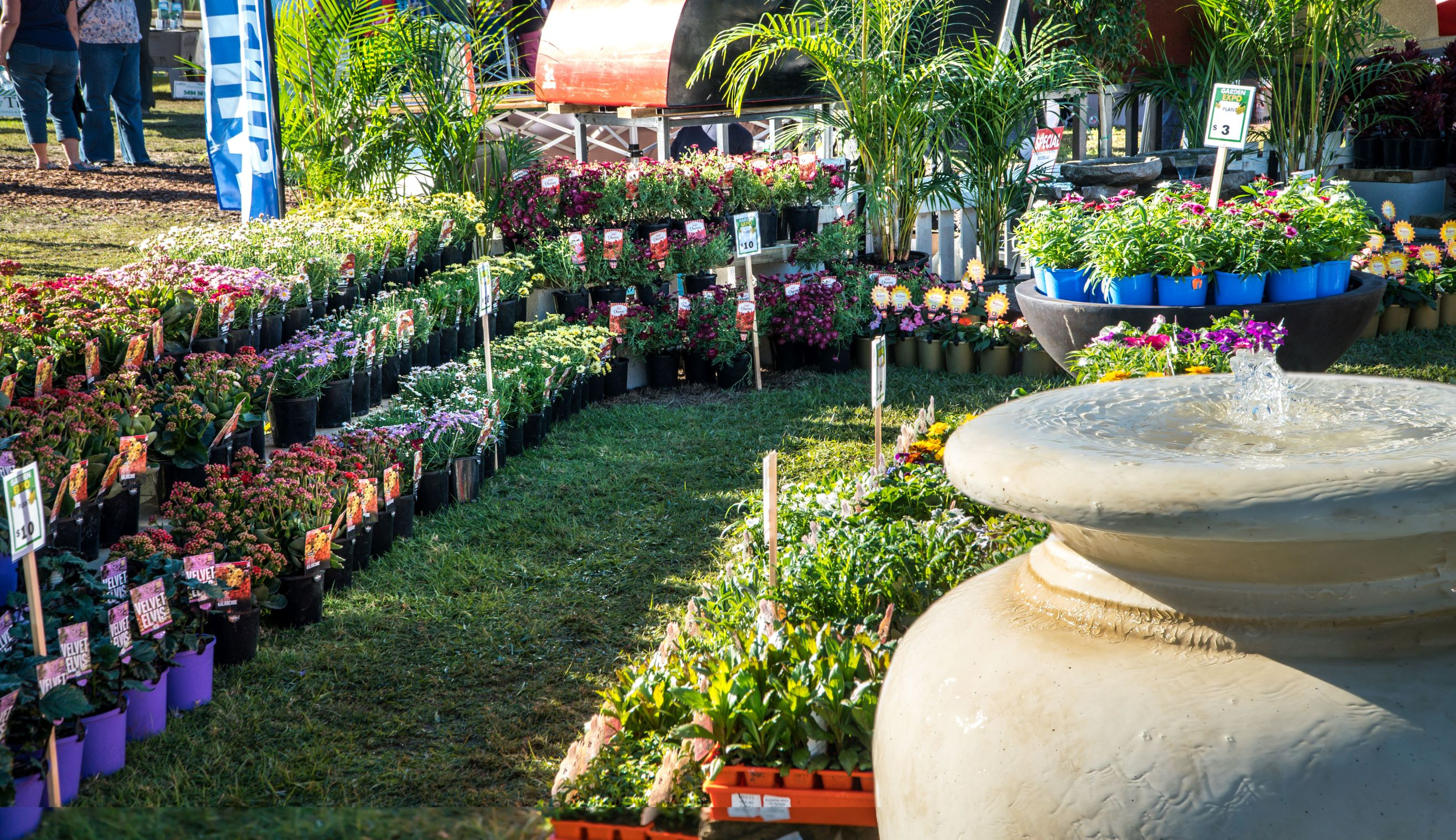 Queensland Garden Expo exhibitors