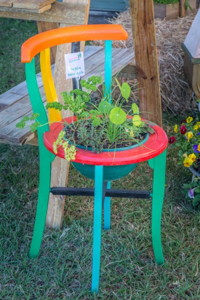 Quirky Container Garden Competition