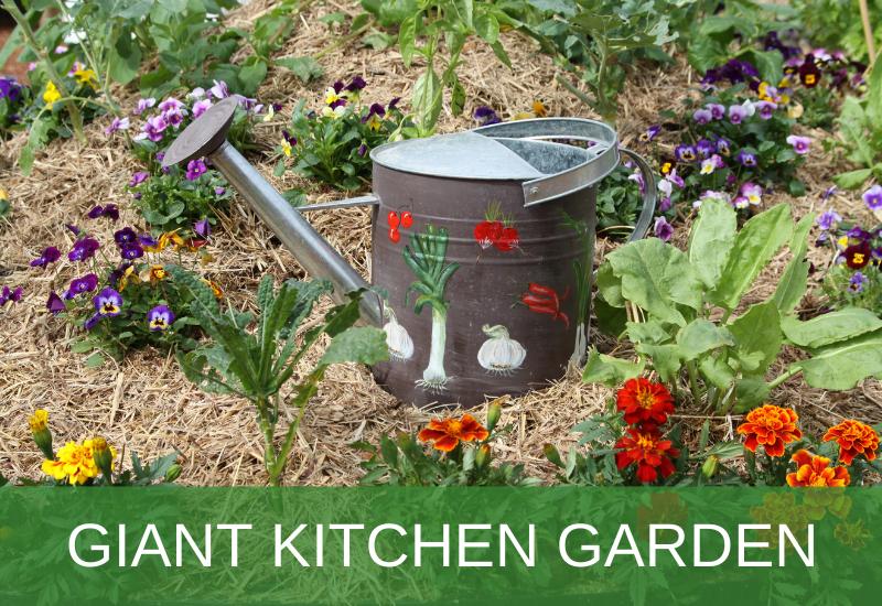 Giant Kitchen Garden